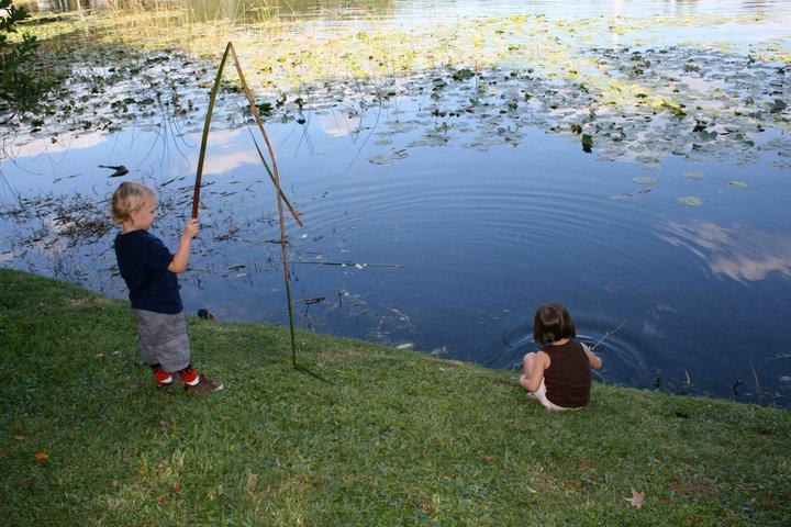 Lake Lily Park, Maitland