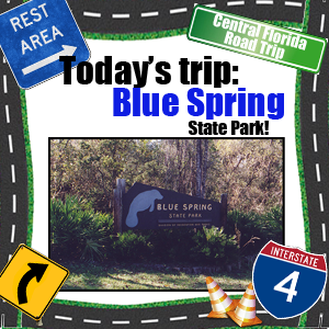 Road-Trip-Blue-Springs
