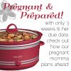 pregnant-and-prepared