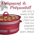 Pregnant Foodie Mom Plans Ahead!