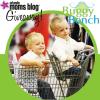 buggy-bench-web