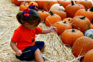 Fun Fall Central Florida Family Events!