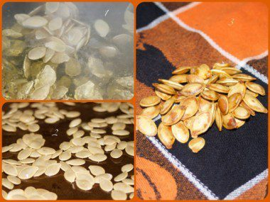 Halloween Tricks And Treats crafts recipe pumpkin seeds