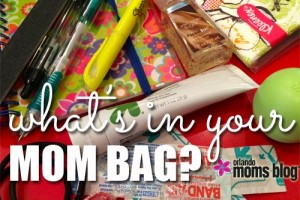 mom-purse