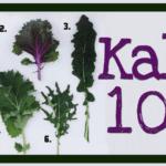 KALE 101