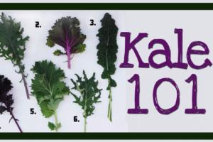 Kale-101B