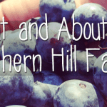Out and About – Southern Hill Farms