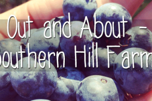 Out-and-About---Southern-Hill-Farms