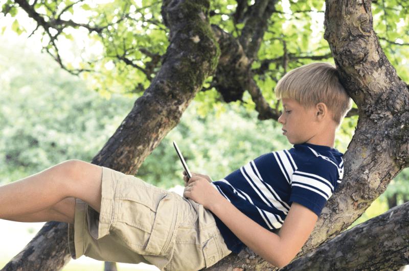 3 boy reading in tree