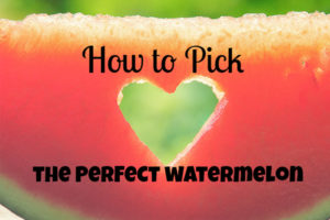 how-to-pick-the-perfect-watermelon