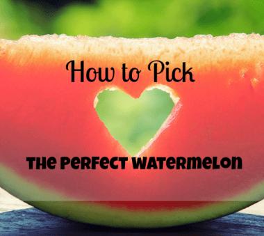 watermelon cover
