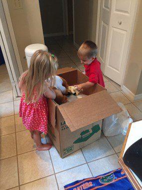"""Helping"" unpack..."