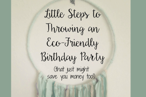 Little-Steps-to-Throwing-an-Eco-Friendly-Birthday-Party