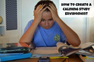 Calming study enviroment cover 350