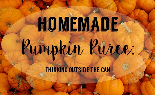Pumpkin Puree DIY OMB