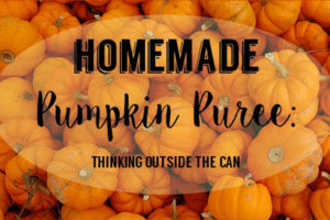 homemade-pumpkin-puree-thinking-outside-the-can2