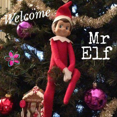 Mr Elf Debuts_OMB