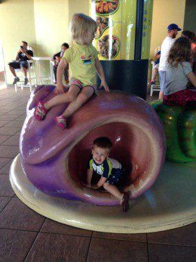 Exploring the Florida Aquarium
