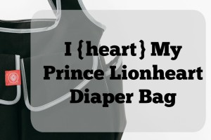 Lionheart Bag Review