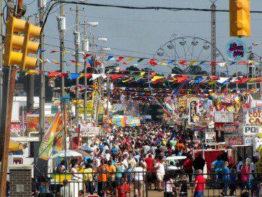OMB Spring Fair 3