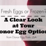 Fresh Eggs or Frozen? A Clear Look at Your Donor Egg Options