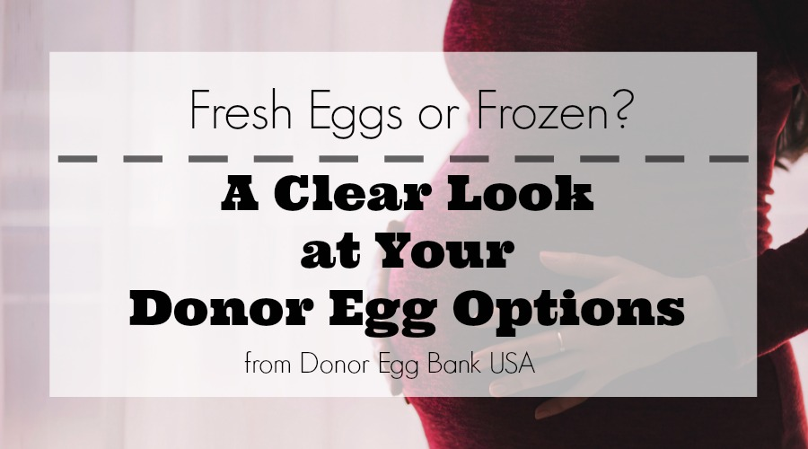 Fresh eggs or frozen featured image
