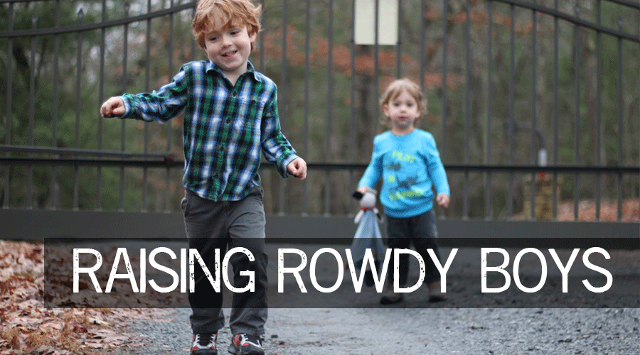 Raising-Rowdy-Boys