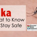 Zika: What to Know to Stay Safe