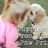 Puppies-Pros,-Problems-and-Paw-Prints