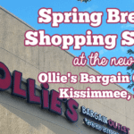 Spring Break Shopping Spree at the New Ollie's Bargain Outlet Store in Kissimmee