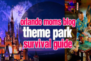OMB-Theme-Park-Survival-Guide-2