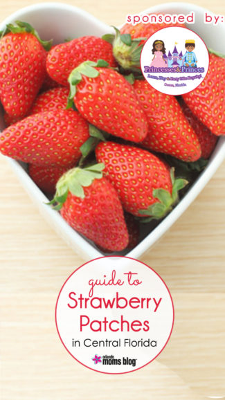 Strawberry-Patches3-Sponsored-By
