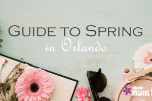 OMB-Guide-to-Spring-4