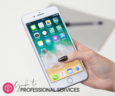 Guide to Professional Services
