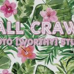 wall crawl