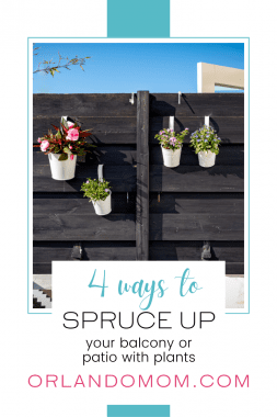 transform your outdoor space with plants